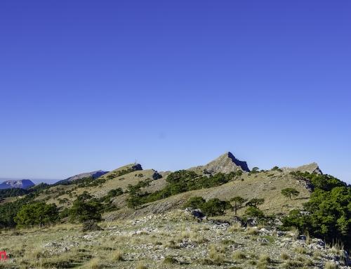 Picos de la Sierra de Alcaraz y Segura